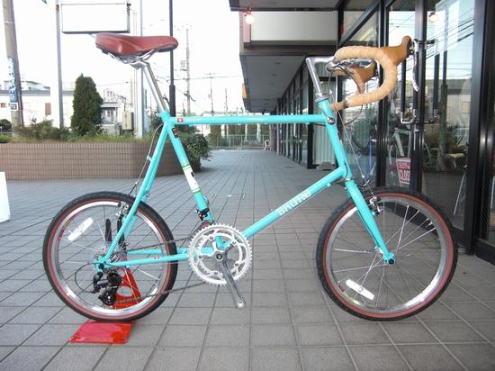 CIMG7902.JPG